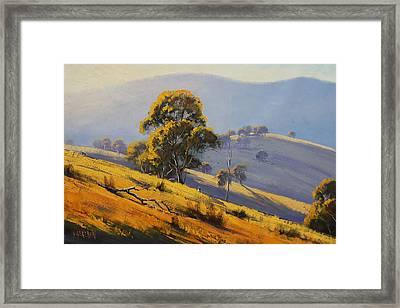 Morning Sunlight  Framed Print by Graham Gercken