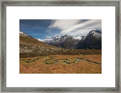 Mountain Biotope Framed Print by Lorenzo Tonello