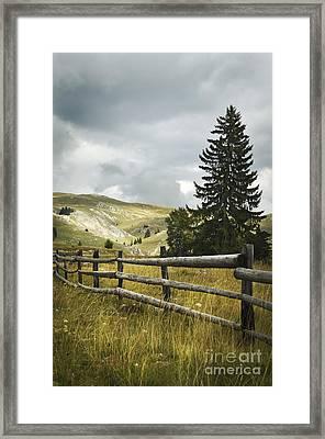 Mountain Landscape Framed Print by Jelena Jovanovic