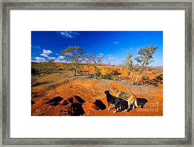Mundi Mundi Plain Wash Away  Framed Print by Bill  Robinson