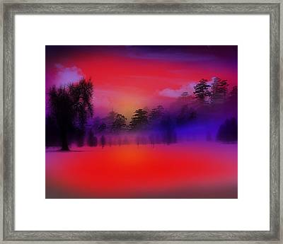 Nature Composition In Blue Framed Print by Mark Ashkenazi