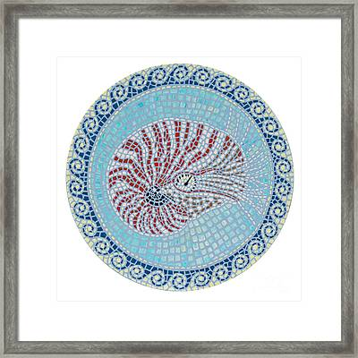 Nautilus Framed Print by Danielle  Perry