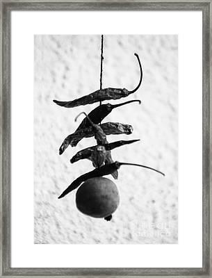 Neembu Mirch Lemon N Chillies Framed Print by Vineesh Edakkara
