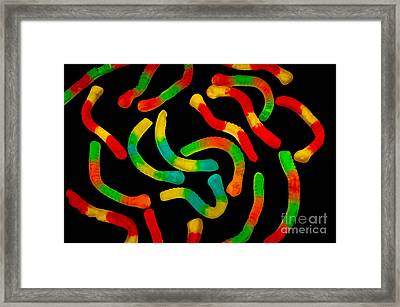 Neon Worms Framed Print by Anthony Sacco
