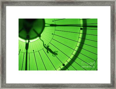 Newt In Magnetic Field Framed Print by James L. Amos