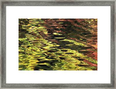 Oak And Maple Trees Reflections In Framed Print by Thomas Kitchin & Victoria Hurst