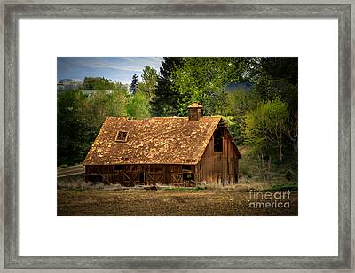Old Barn Framed Print by Robert Bales