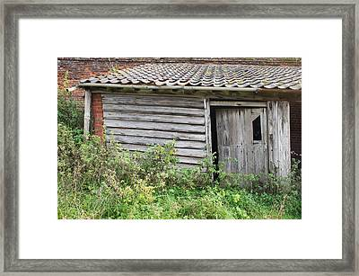 Old Hut Framed Print by Tom Gowanlock