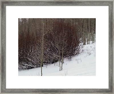Old Powderhorn Framed Print by Anne Back