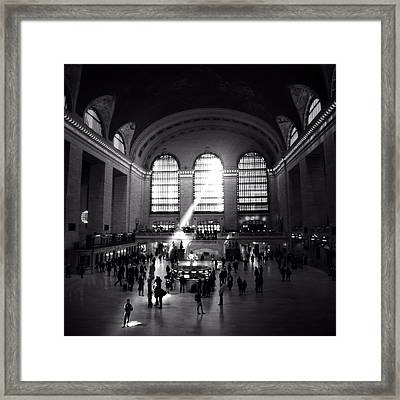 One In A Million Framed Print by Natasha Marco