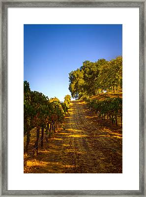 Opolo Winery Framed Print by Bryant Coffey