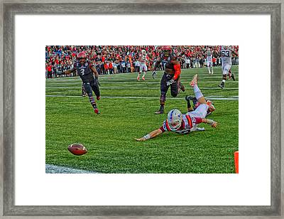 Out Of Reach Framed Print by Mountain Dreams