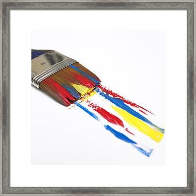 Paintbrush Framed Print by Bernard Jaubert