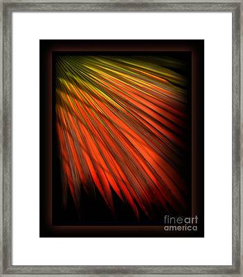 Palm Sunday Framed Print by Shevon Johnson