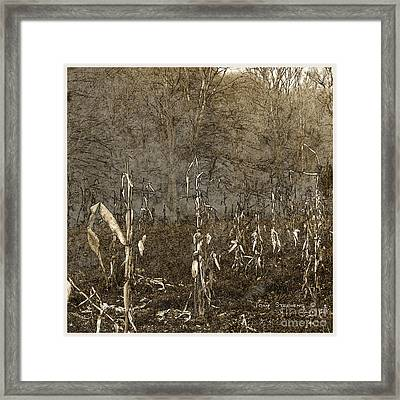 Paltry Harvest Framed Print by John Stephens