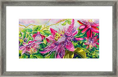 Passionflower Party Framed Print by Janis Grau