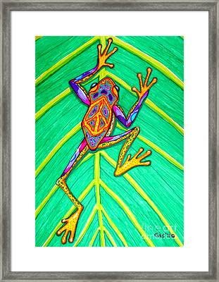 Peace Frog Framed Print by Nick Gustafson