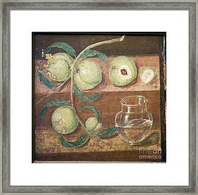 Peaches And A Glass Jug, Roman Fresco Framed Print by Sheila Terry