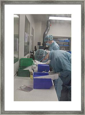 Pharmacist Preparing Chemotherapy Drugs Framed Print by Life In View