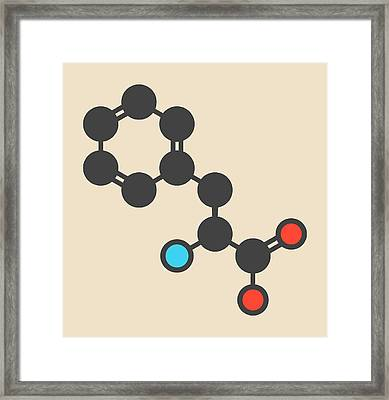 Phenylalanine Amino Acid Molecule Framed Print by Molekuul