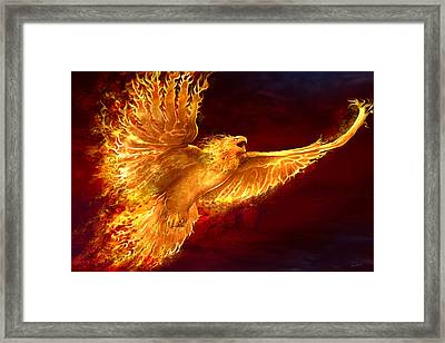 Phoenix Rising Framed Print by Tom Wood