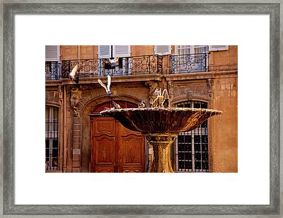 Pigeons Playing In The Place D' Framed Print by Brian Jannsen
