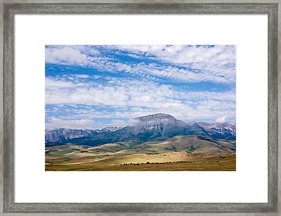 Pine Butte Swamp Preserve Framed Print by Andrew J. Martinez