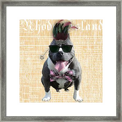 Pitbull Bowtie Collection Framed Print by Marvin Blaine