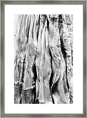 Polyester Framed Print by Tom Gowanlock