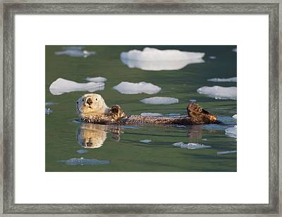 Prince William Sound, Alaska, Sea Framed Print by Hugh Rose
