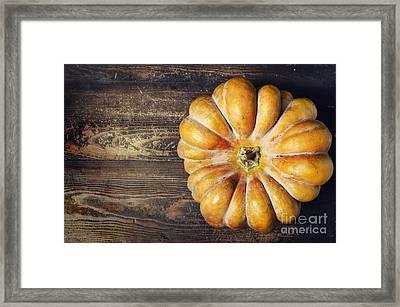 Pumpkin Framed Print by Jelena Jovanovic