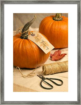 Pumpkins For Thanksgiving Framed Print by Amanda And Christopher Elwell