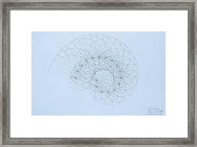 Quantum Nautilus Framed Print by Jason Padgett
