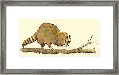Raccoon Framed Print by Juan  Bosco