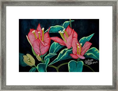Red Bougainvillae Framed Print by Charito ChatRose Mahilum