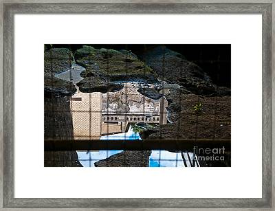 Reflections Framed Print by Marion Galt