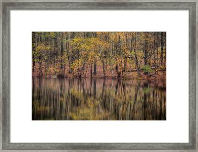 Reflections Of Life Framed Print by Karol Livote