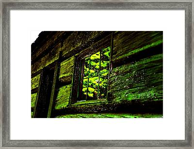 Reflections Of The Past Framed Print by David Lee Thompson