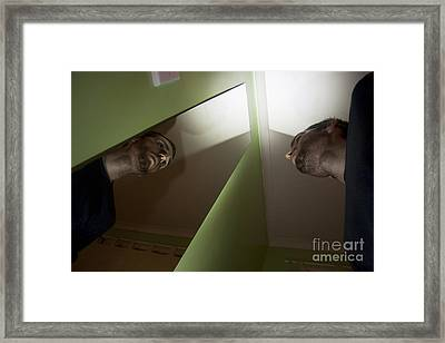 Reflections Framed Print by Jorgo Photography - Wall Art Gallery