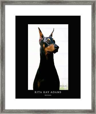 Regal Framed Print by Rita Kay Adams