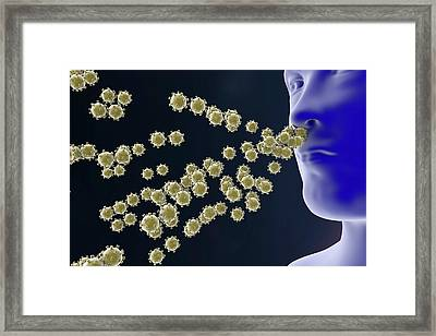 Respiratory Viruses Framed Print by Kateryna Kon