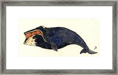Right Whale Framed Print by Juan  Bosco