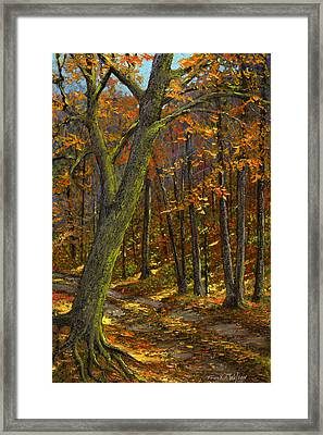 Road In The Woods Framed Print by Frank Wilson