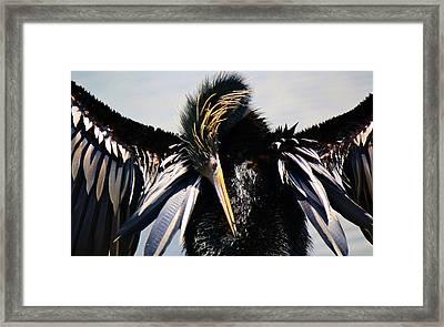 Rock On Framed Print by Paulette Thomas