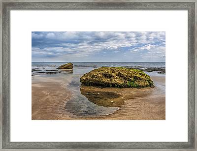 Rock Framed Print by Svetlana Sewell