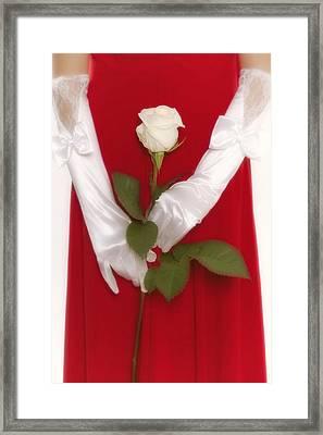 Rose Framed Print by Joana Kruse