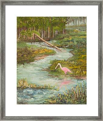 Roseate Spoonbill Framed Print by Annie St Martin