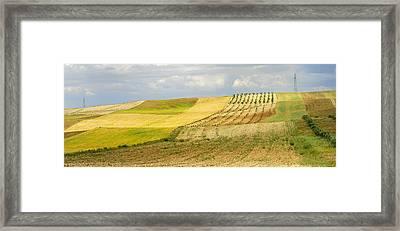Rural Fields Framed Print by Guido Montanes Castillo