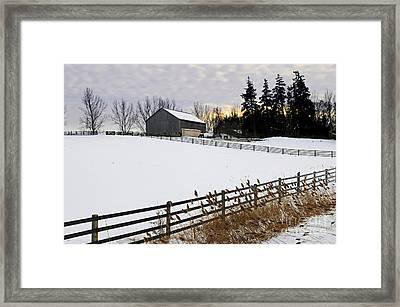 Rural Winter Landscape Framed Print by Elena Elisseeva