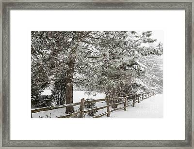 Rural Winter Scene With Fence Framed Print by Elena Elisseeva